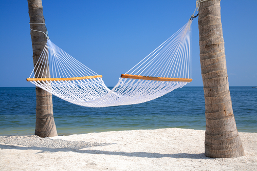 Hammock Without Trees Hammock-between-two-palm-trees