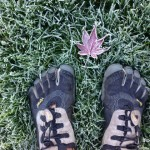frosty shoes and leaves